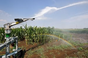 Irrigation system waters plants at a farm field.